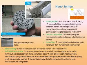 Nanosemen