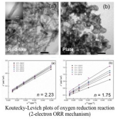 MnO2 nanoparticles (rod- and flake-shape) for electrocatalyst ofORR